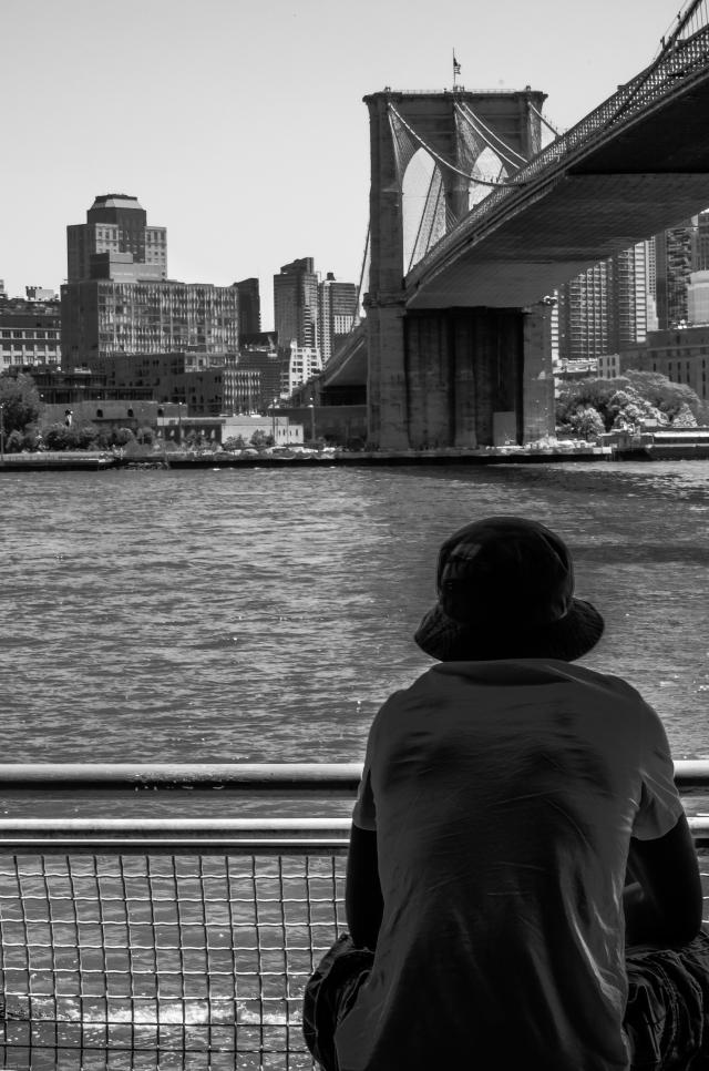 view bridge-3020